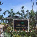 ココ・パーム・ガーデンビーチのアクティビティ!種類や料金を紹介!