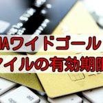 ANA・VISA/マスター「ワイドゴールドカード」マイルの有効期限と上手な活用方法!