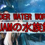 グアムの水族館「UNDER  WATER WORLD」(アンダーウォーターワールド)